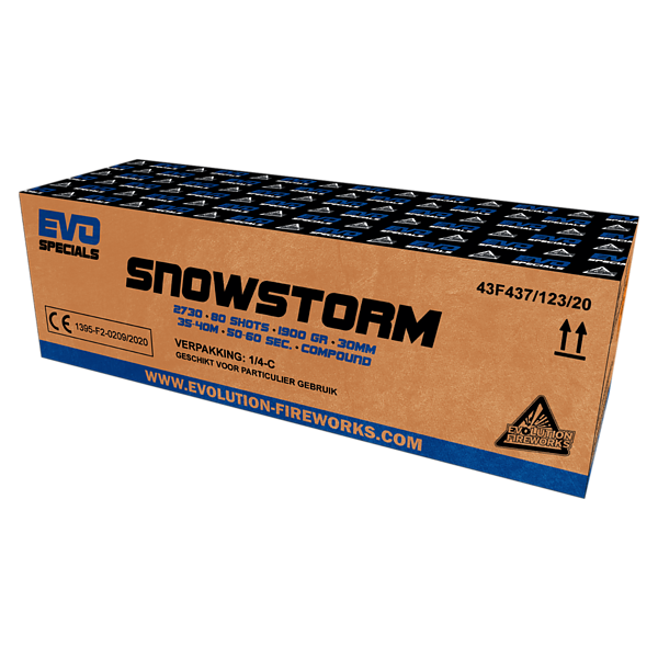 Snowstorm -